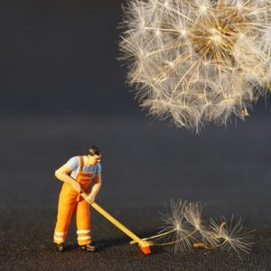 Spring Cleaning for Legal Professionals | Law Firm Consultants