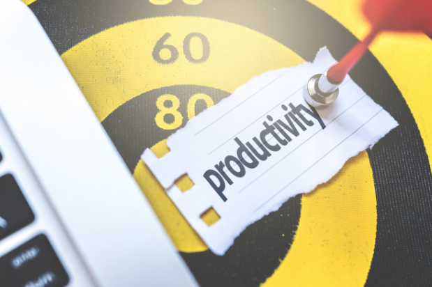 Personal Productivity Panel - Your Practical Action Plan | Law Firm Consultants